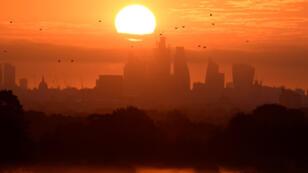 Las aves vuelan mientras amanece en Londres, Gran Bretaña, el 5 de agosto de 2018.