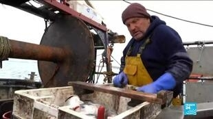 2020-10-15 11:07 UK fishermen hopeful of netting late deal in EU trade talks