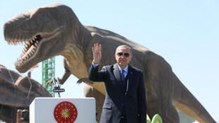 الرئيس التركي رجب طيب أردوغان خلال تجمع لأنصاره بأنقرة - 20 مارس/آذار