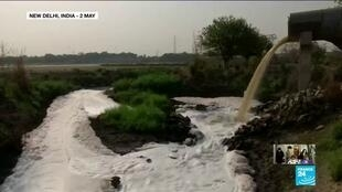 2020-06-05 10:19 India's sacred river breathes again as pollution drops with Covid-19 lockdown measures