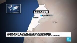 2020-07-22 12:11 Can medical marijuana revive Lebanon's ailing economy?