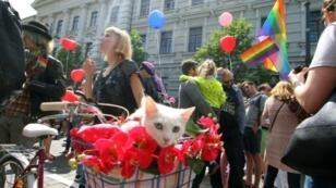 LGBT rights demonstrators gather in 2016, in Vilnius