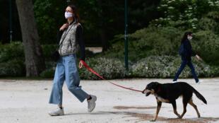 Una mujer pasea a su perro en el parque Parco Sempione el 4 de mayo de 2020 en Milán mientras Italia comienza a aliviar el bloqueo destinado a frenar la propagación del Covid-19.