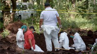 Familiares de personas desparecidas buscan restos en el municipio de Navolato, en el estado de Sinaloa, México, 9 de marzo de 2019.