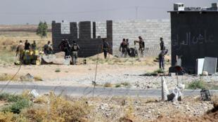 Combattants de l'armée irakienne et miliciens chiites à Amerli.