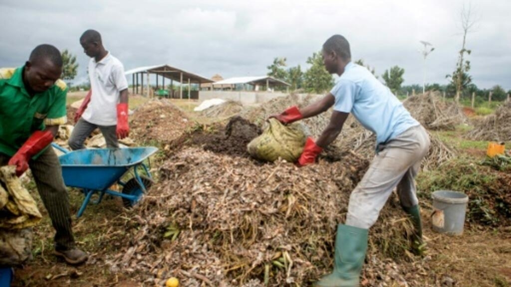 Trash is gold' as Benin community turns waste into biogas