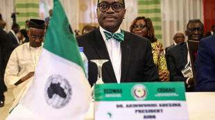 Adesina, 60, a charismatic speaker known for his elegant suits and bow ties, became the first Nigerian to helm the AfDB in 2015