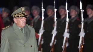رئيس أركان الجيش الجزائري الفريق أحمد قايد صالح.