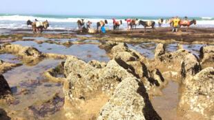 Arte - mafia de la arena Marruecos