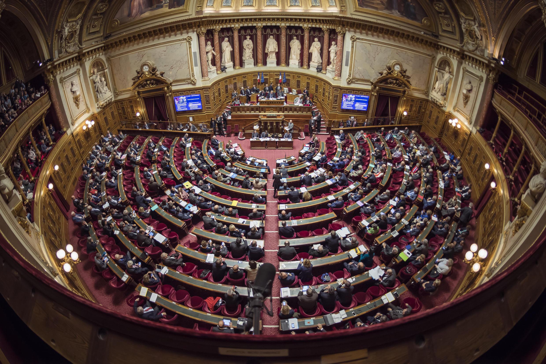 البرلمان الفرنسي.
