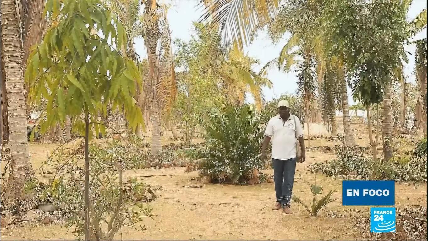 En Foco - Permacultura Senegal