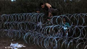 Des migrants tentent de passer par-dessus la clôture hongroise installée le long de la frontière serbe, le 30 août 2015.