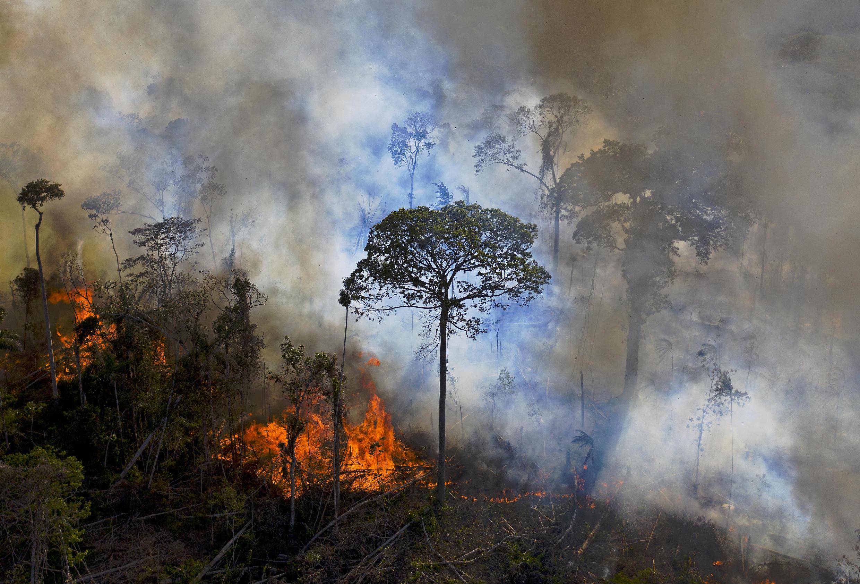 De la fumée s'échappe d'un feu allumé illégalement dans la forêt amazonienne, le 15 août 2020