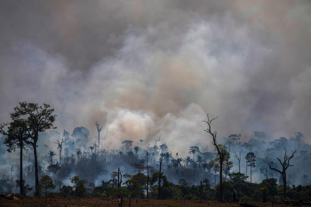 Una nube de humo provocada por los incendios forestales en el estado de Pará, Brasil, en la cuenca del Amazonas, el 27 de agosto de 2019.
