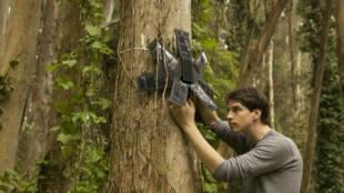 Topher White en train d'installer un de ses smartphones capables de repérer le bruit d'une tronçonneuse dans la forêt.