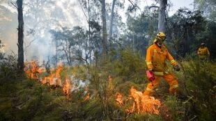 Australian firefighters in Corryong, north-eastern Victoria, on January 7, 2020.