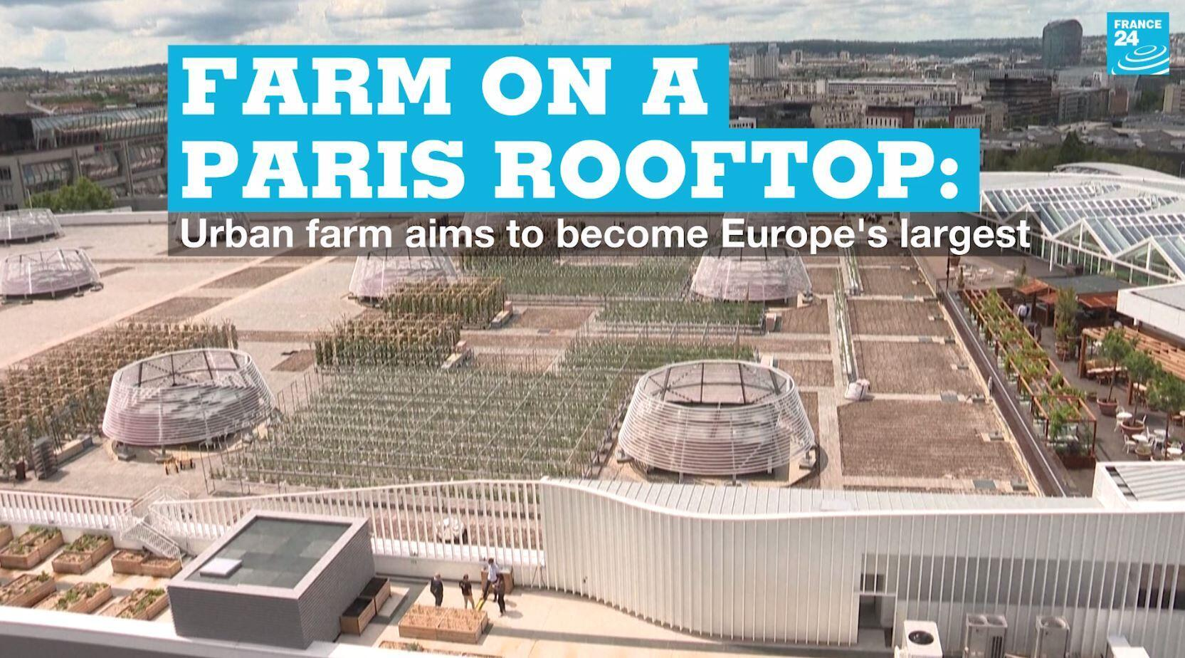 A new urban farming project in Paris hopes to become Europe's biggest by 2022.