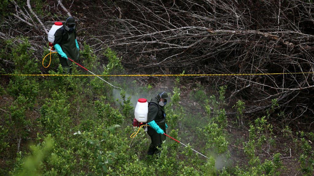 La policía antinarcóticos de Colombia rocía herbicida en una plantación de coca en Tumaco, Colombia, el 26 de febrero de 2020