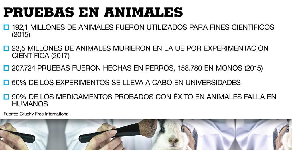 Hay alternativas no animales más efectivas, precisas y rápidas