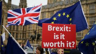 Manifestation anti-Brexit devant le Parlement à Londres, le 12 juin 2018.