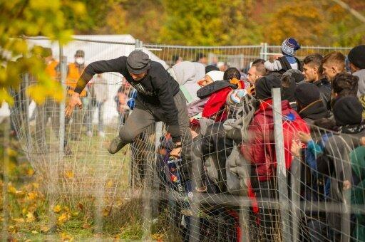 مهاجر يقفز فوق سياج عند الحدود السلوفينية النمساوية في شبيلفلد في 25 تشرين الأول/أكتوبر 2015