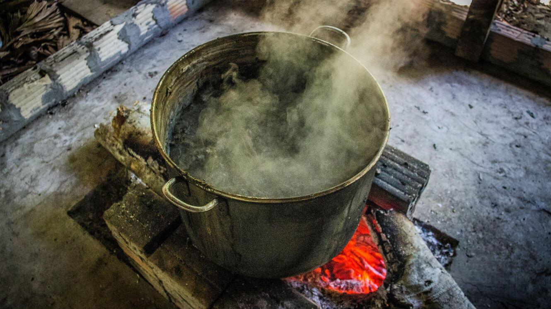 Petite marmite d'ayahuasca, OKLM.