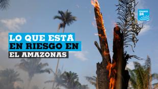Un tramo de selva amazónica se quema mientras los taladores y agricultores lo limpian en Iranduba, estado de Amazonas, Brasil, el 20 de agosto de 2019.