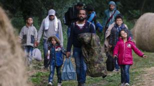 Des migrants marchent près de la frontière séparant la Serbie de la Hongrie, le 23 juin 2015.