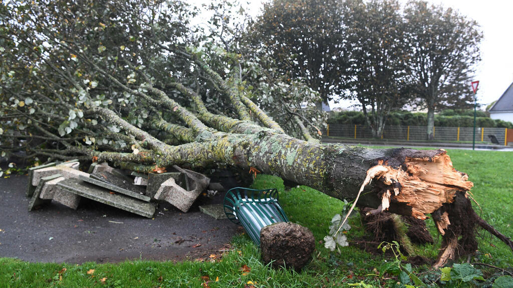 Storm Aurore leaves 250,000 French homes without power