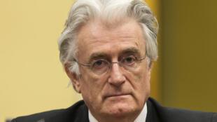 L'ancien chef politique serbe Radovan Karadzic devant le TPIY en 2013.