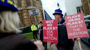 Una activista proeuropea se manifiesta a las puertas del Parlamento británico contra el Brexit. Londres, Reino Unido, el 21 de enero de 2019.