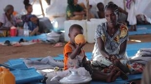 Hundreds of pregnant women are among those who have fled the region of Tigray and are concerned about giving birth in such circumstances.
