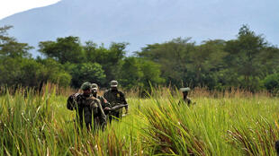 Park sources say at least 200 rangers have paid with their lives in attacks going back more than a decade