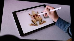L'appli Froggipedia, pour disséquer une grenouille en réalité augmentée sur iPad et iPhone.