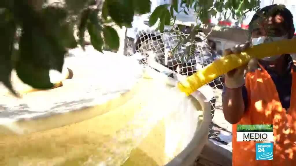 2021-06-05 14:34 Petorca, una de las regiones chilenas que más resiente la escasez del agua (1/6)
