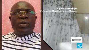 Invasion-termitas-RDC-los-observadores