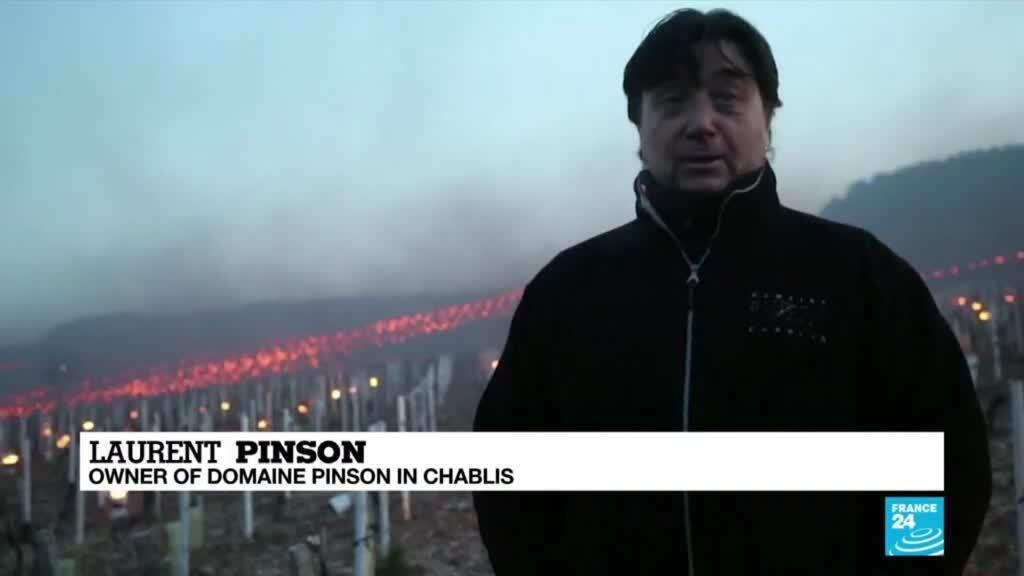 2021-04-09 08:12 French wine growers light fires as frost threatens harvest