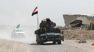 Des militaires irakiens près de Falloujah, le 5 juin 2016.