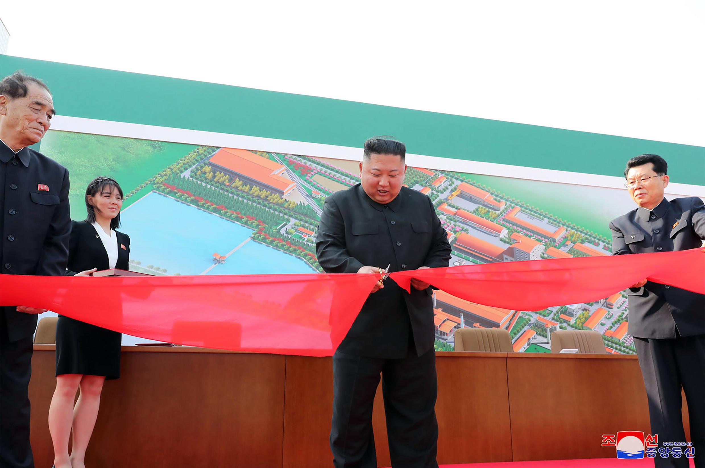 الزعيم الكوري الشمالي كيم جونغ أون. 2 مايو/أيار 2020.
