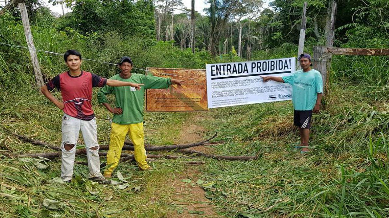 Les indigènes Uru-eu-wau-wau se sont enfoncés dans la forêt pour se protéger du nouveau coronavirus. Ils tentent de contrôler les accès à leur territoire mais les invasions illégales se sont intensifiées avec la pandémie.
