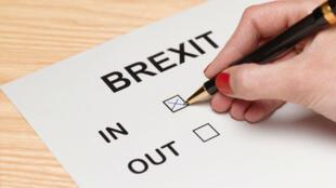 La pétition réclamant la tenue d'un second référendum sur la sortie du Royaume-Uni de l'Union européenne a été manipulée par des utilisateurs du forum 4chan.