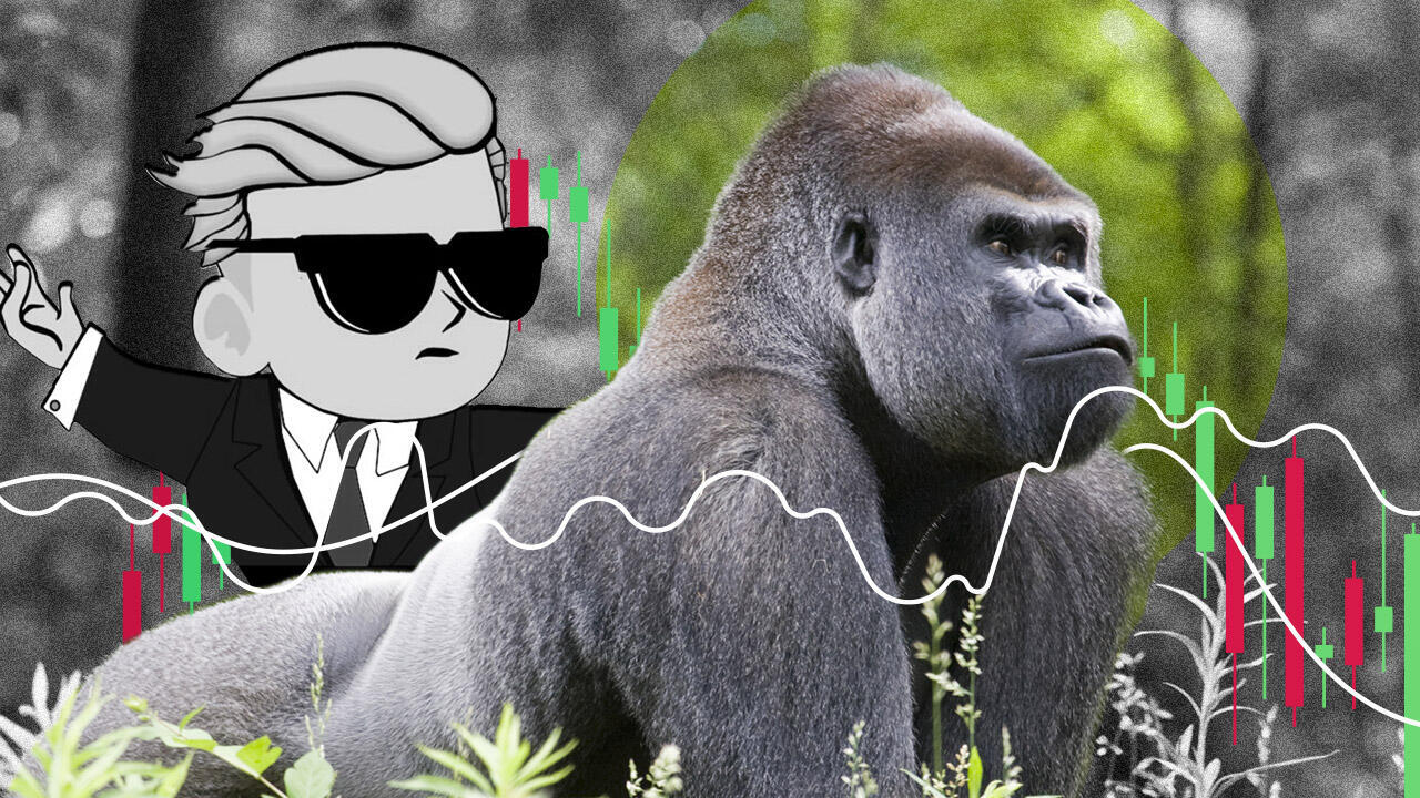 wallstreetbets-gorilles-v2