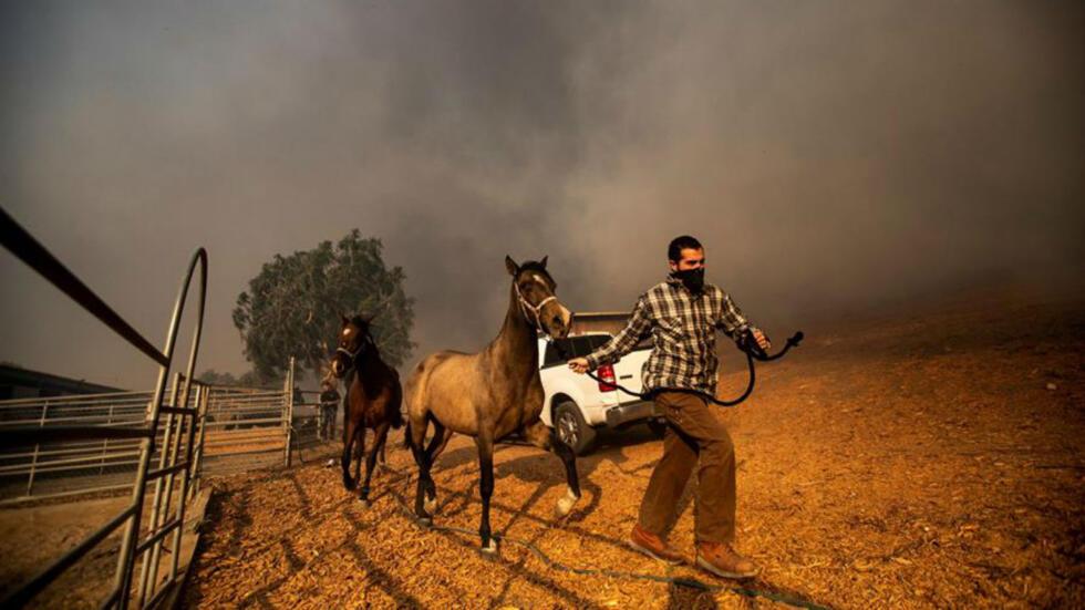 Ganaderos evacúan caballos en un rancho en llamas mientras el incendio 'Easy Fire' se extiende cerca de Simi Valley, al norte de Los Ángeles, California, el 30 de octubre.