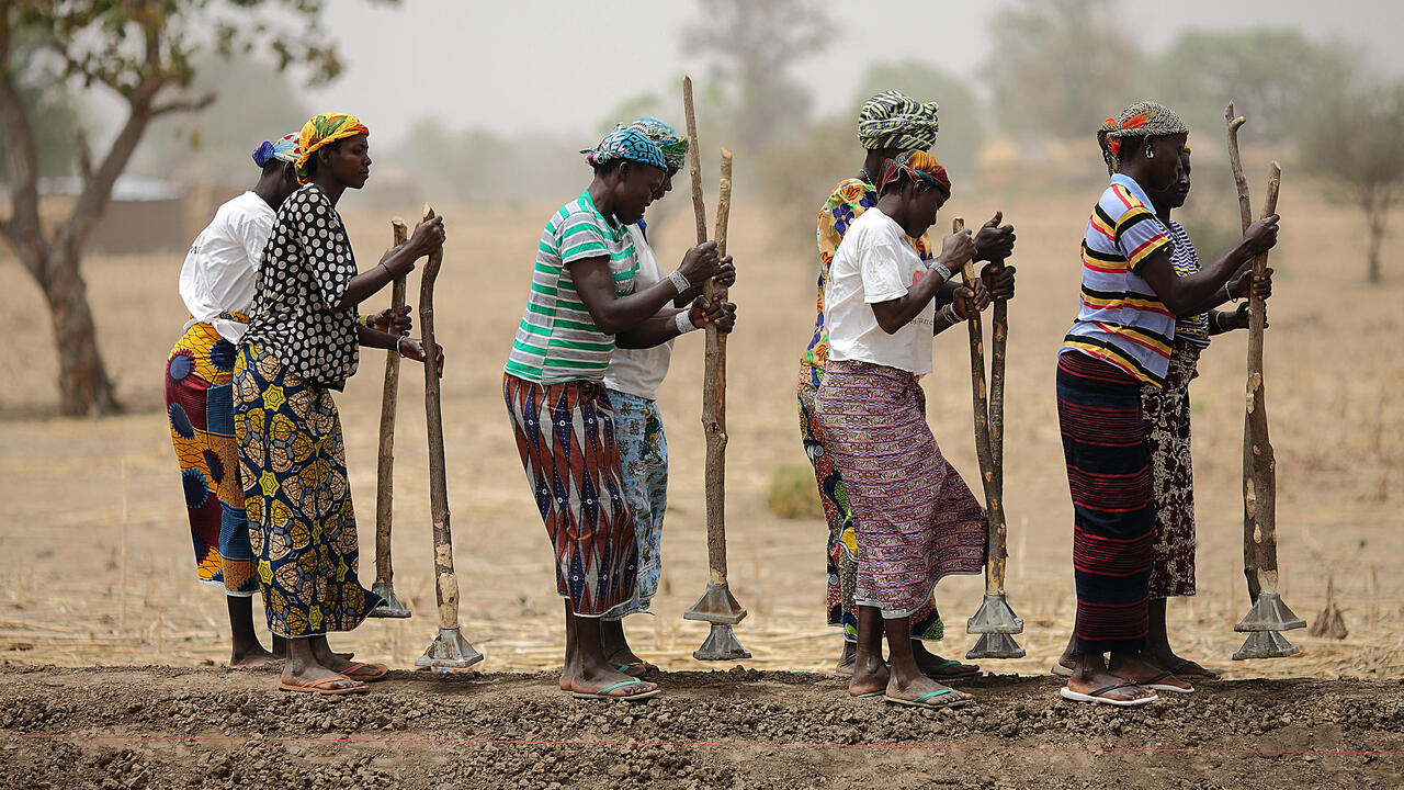 Can 'Great Green Wall' carry Sankara's ecological, pan-African dream?