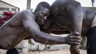 Senegal lutte
