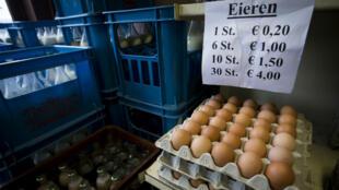 Vente d'œufs à Merksplas, en Belgique, le 8 août 2017.