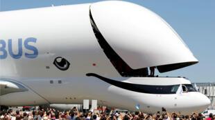 El Beluga XL tiene un fuselaje 7 metros más largo y 1.7 metros más alto que su predecesor el Beluga ST