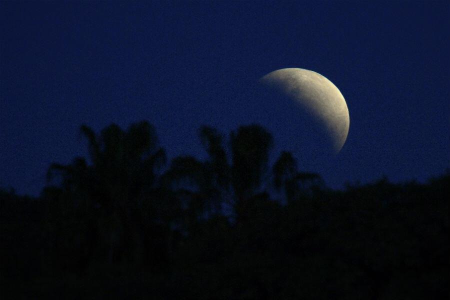 L'éclipse partielle de Lune derrière des arbres à Buenos Aires, en Argentine, le 16 juillet 2019.