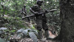 Des membres des FDLR dans une forêt près de Pinga, au Nord-Kivu, en 2009.