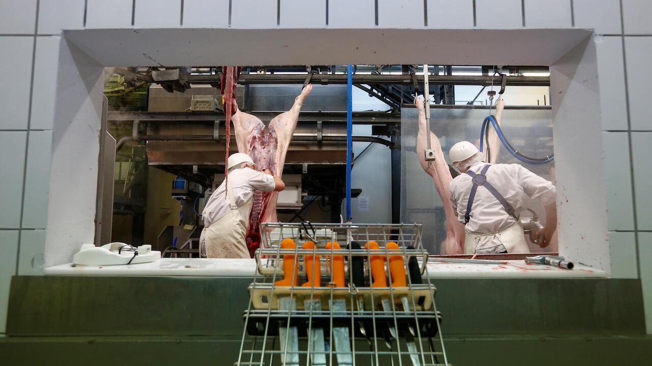Butchers work in the Hasenheide slaughterhouse in Fuerstenfeldbruck, Germany, January 28, 2019.